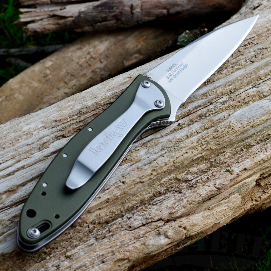 картинка Складной полуавтоматический нож Kershaw Leek Olive Drab K1660OL от магазина ma4ete